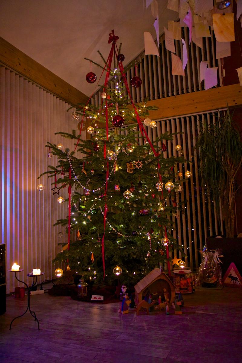 Weihnachtsbaum-002.jpg