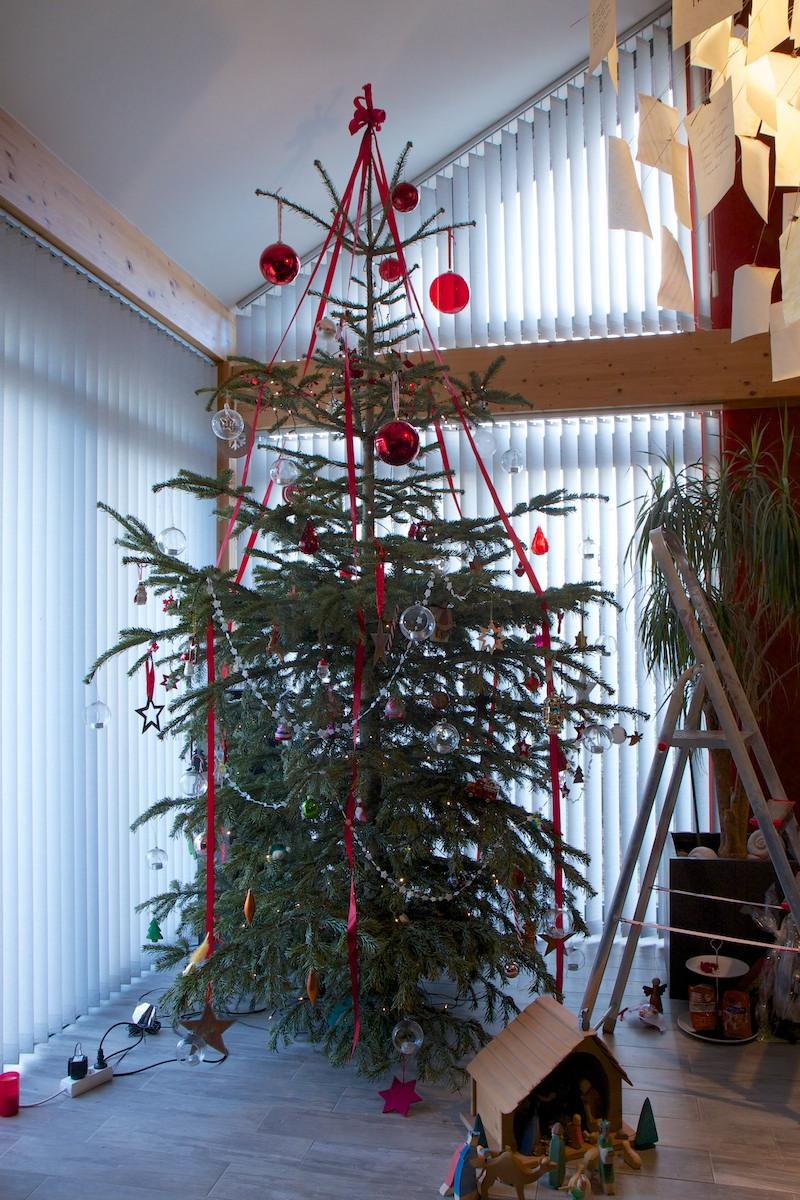 Weihnachtsbaum-003.jpg
