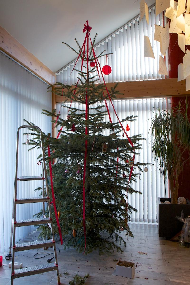 Weihnachtsbaum-006.jpg