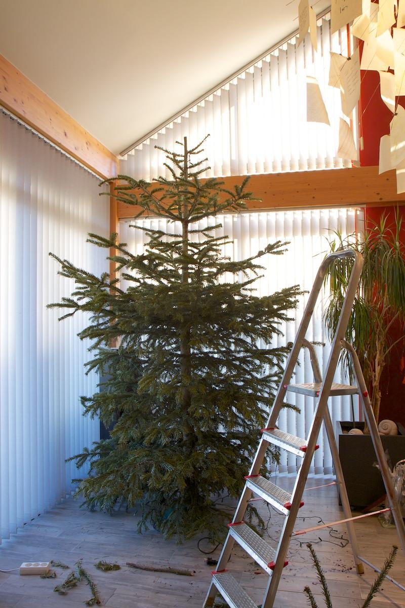 Weihnachtsbaum-013.jpg