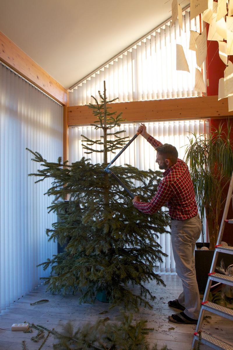 Weihnachtsbaum-014.jpg