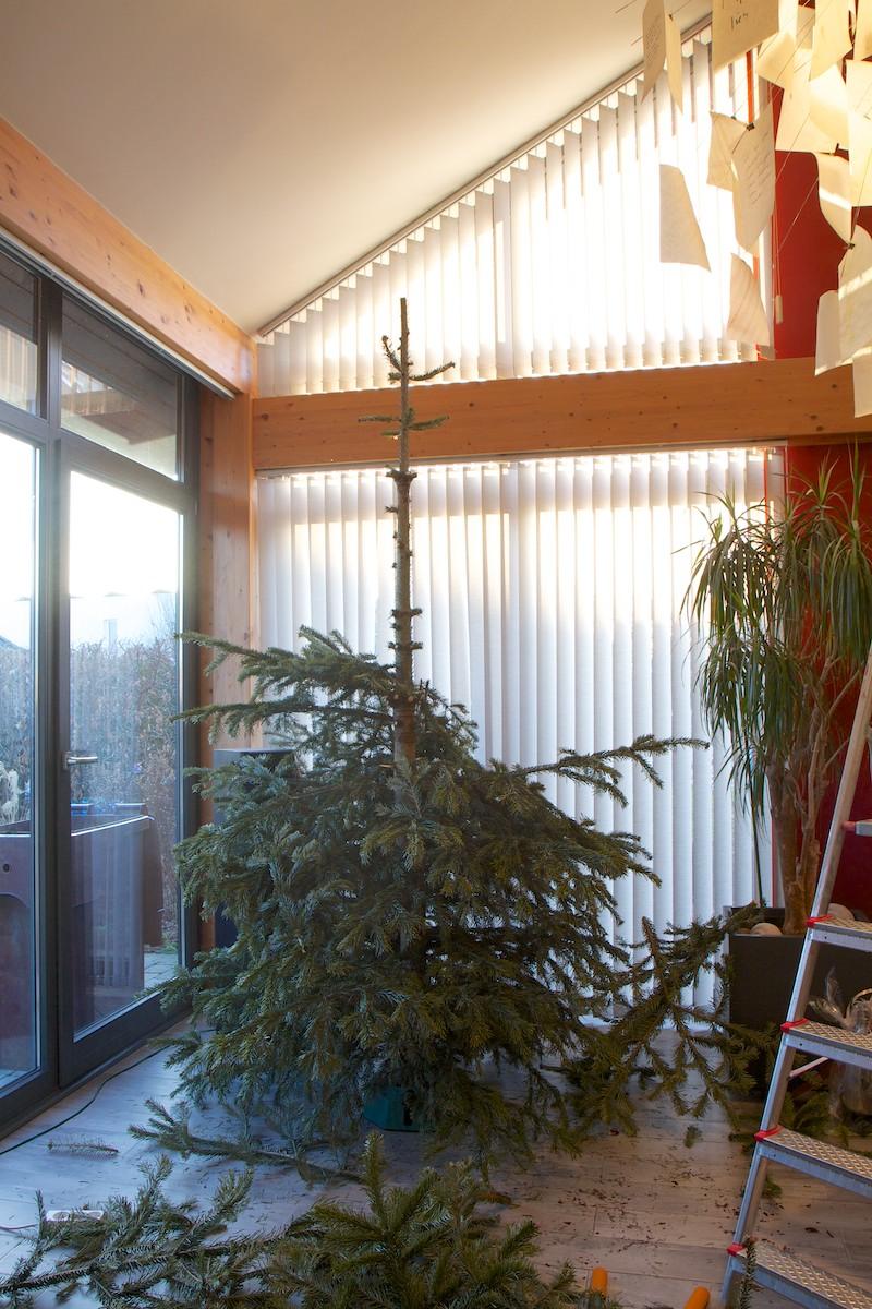 Weihnachtsbaum-015.jpg