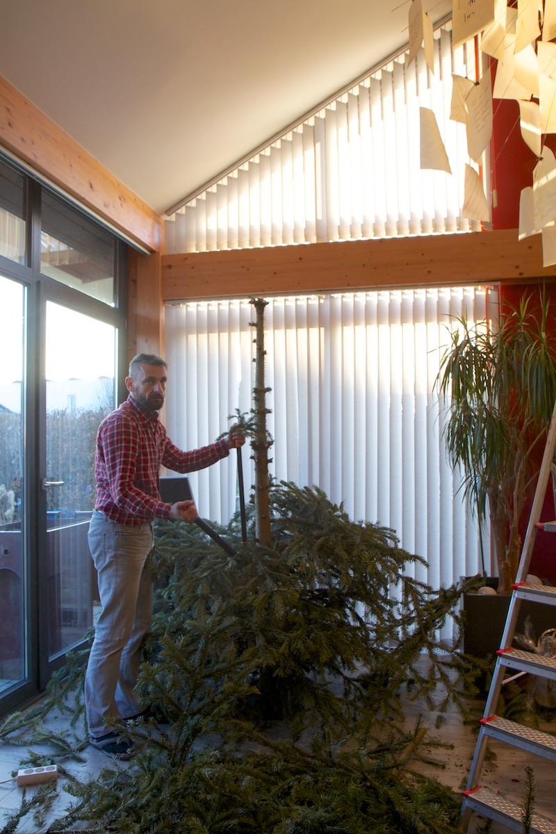 Weihnachtsbaum-016.jpg